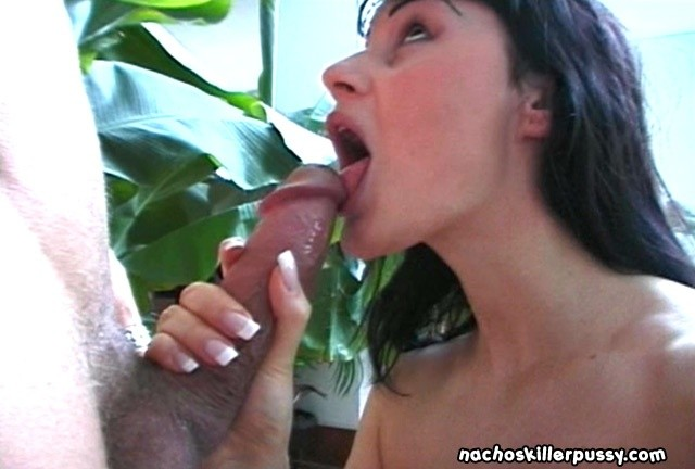 looking beautiful licking cock